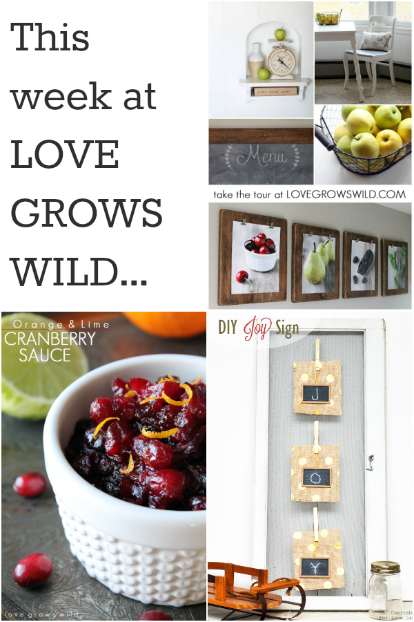 This week's projects and recipes from Love Grows Wild