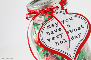Sweet Treats for a Sweet Holiday - This fun gift in a jar is perfect for the holidays!