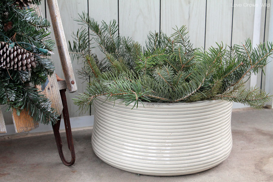 Plant evergreen branches in bare flower pots to decorate for winter!