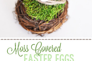 Moss Covered Easter Eggs - LoveGrowsWild.com