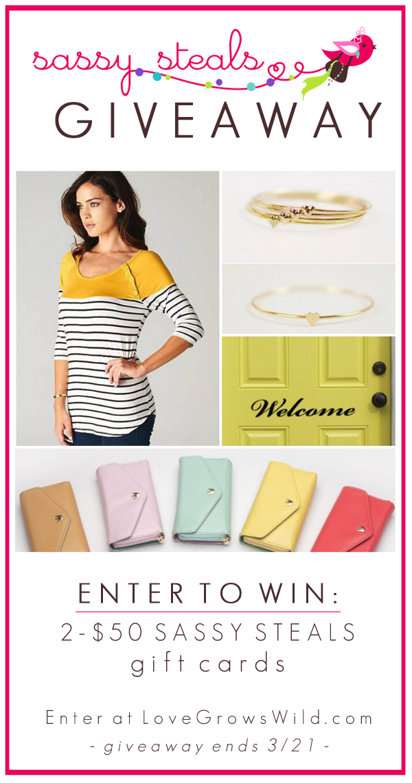 We're giving away TWO $50 gift cards to Sassy Steals! Enter to win at LoveGrowsWild.com