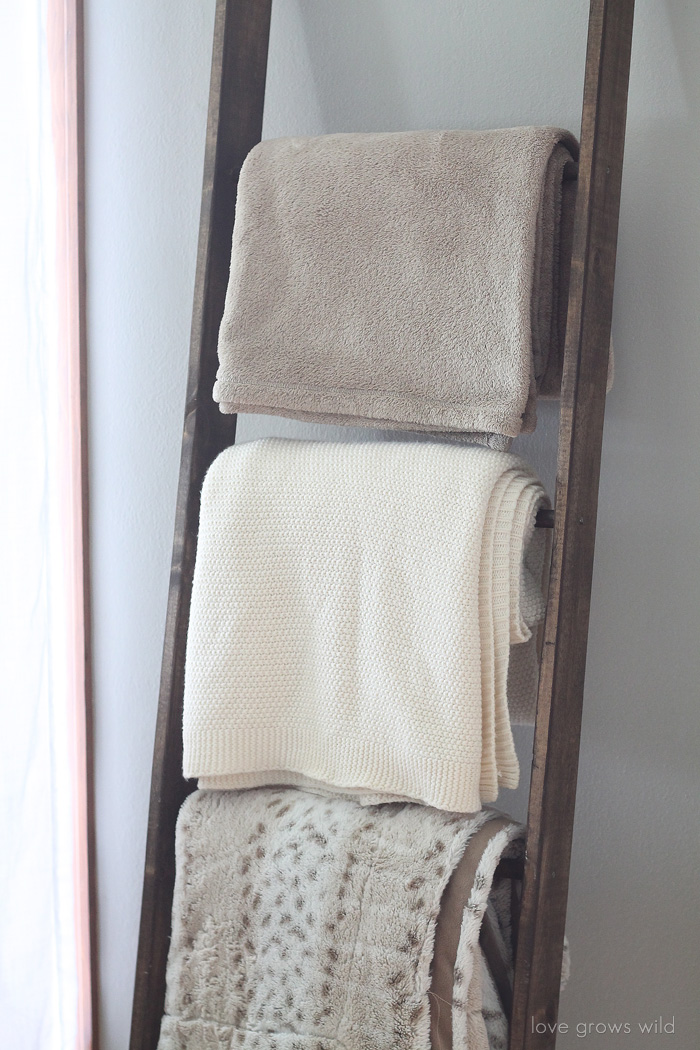 Diy Blanket Ladder Love Grows Wild