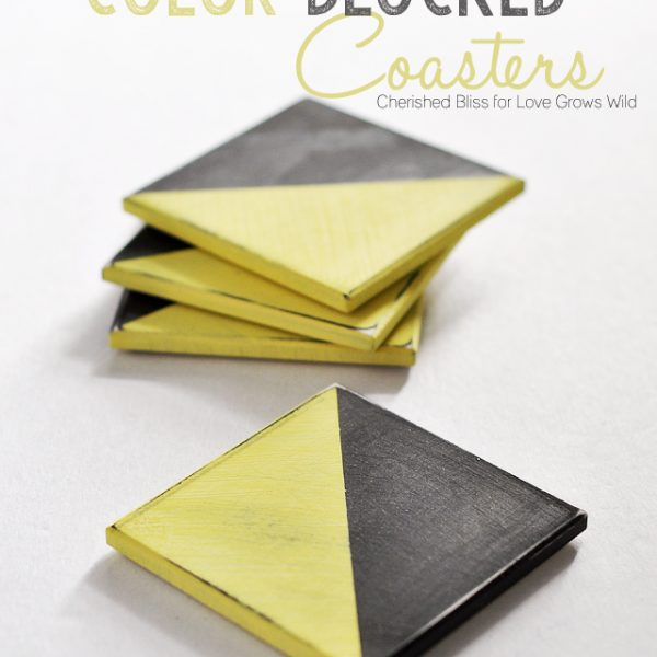 Learn how to make these fun Distressed Color Blocked Coasters! | LoveGrowsWild.com