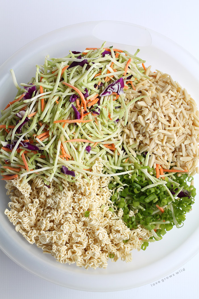 Broccoli Coleslaw - this unique coleslaw recipe might just be the best ...