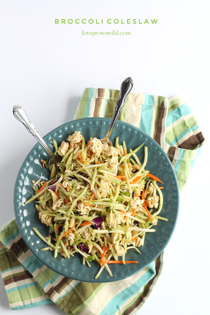 Broccoli Coleslaw - this unique coleslaw recipe might just be the best you've ever eaten! A must-try at your next party or potluck!   LoveGrowsWild.com