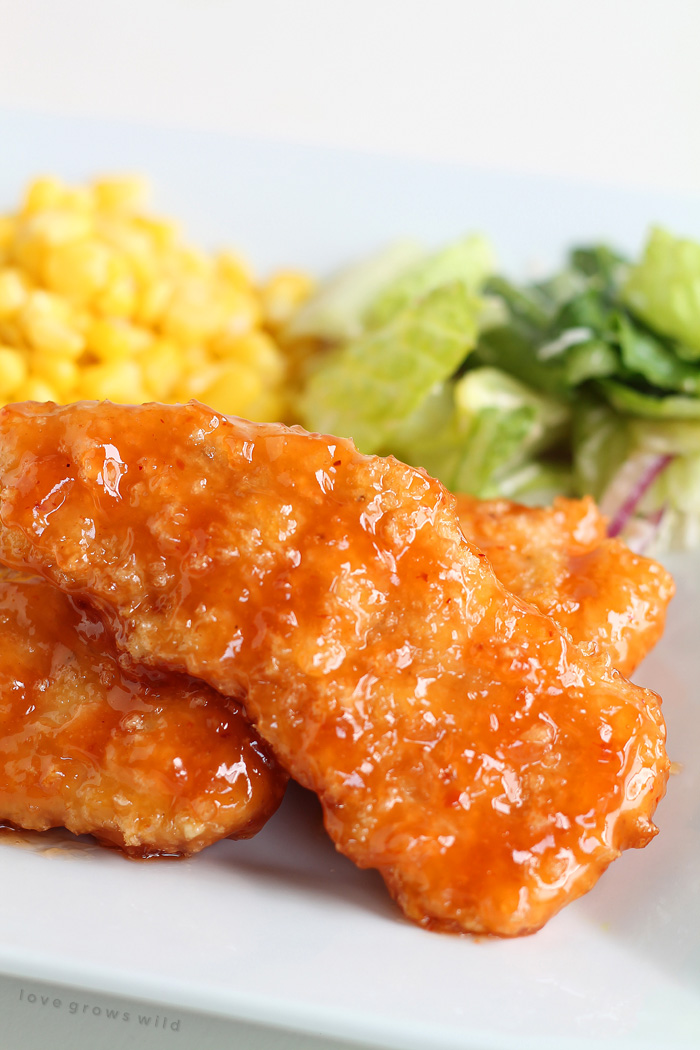 Easy baked chicken tenders smothered in a sweet, tangy honey chipotle sauce! Simply delicious!   LoveGrowsWild.com