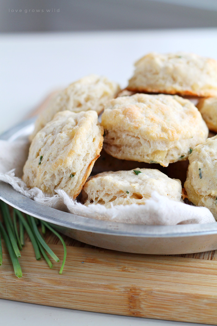 Tender, fluffy biscuits made from scratch with chunks of Brie cheese and chives! The perfect addition to any meal! | LoveGrowsWild.com