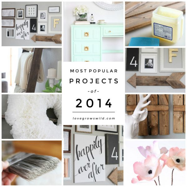 The MOST POPULAR Projects from 2014 voted by readers! | LoveGrowsWild.com