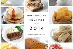 The MOST POPULAR Recipes of 2014! | LoveGrowsWild.com