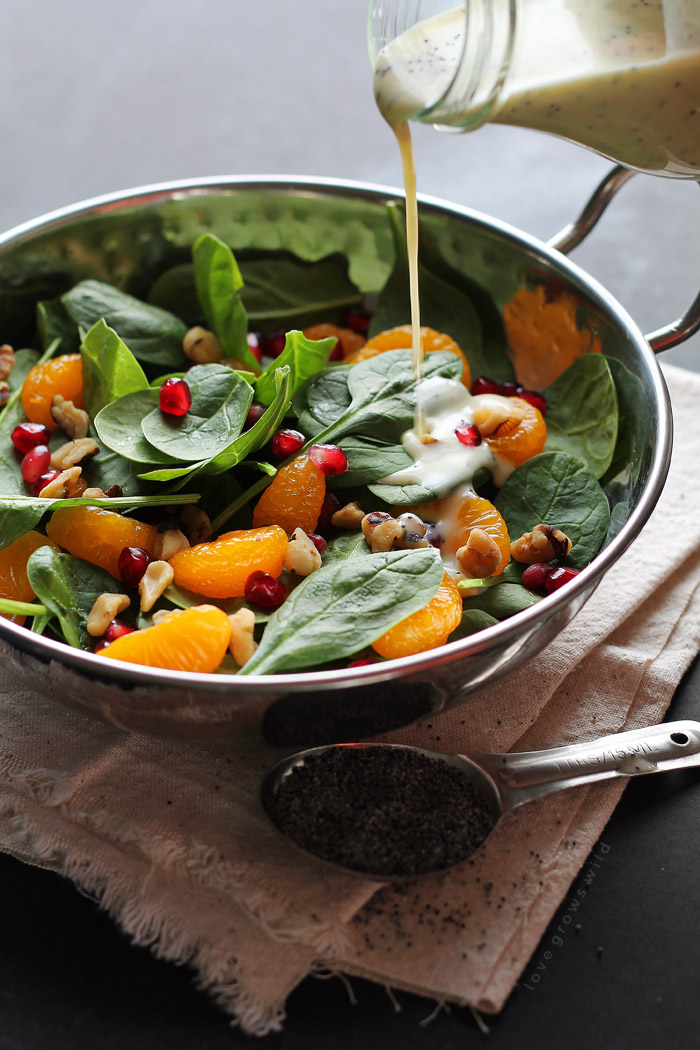 A fresh, healthy Poppyseed Dressing that you can whip up in just seconds! Way better than store-bought!   LoveGrowsWild.com