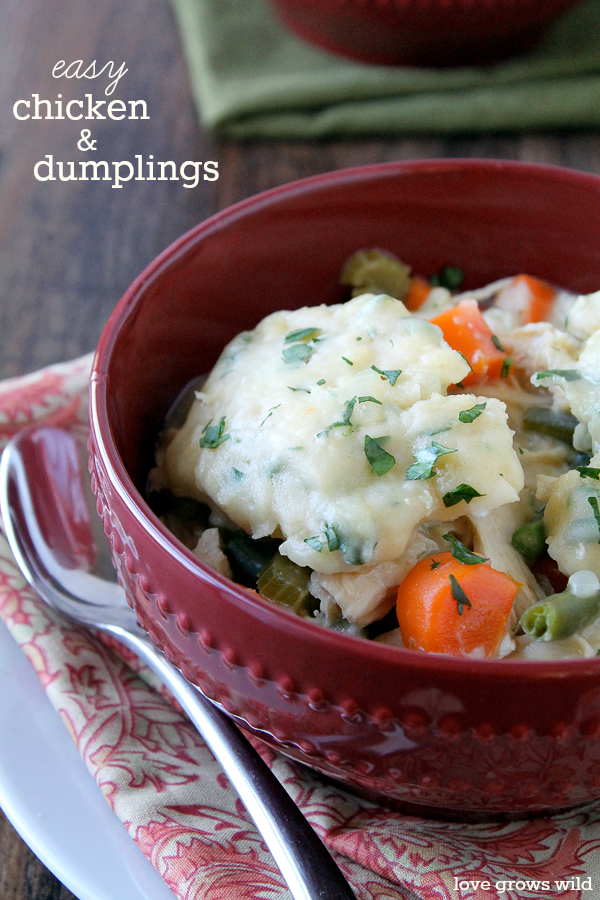 Chicken and Dumplings | LoveGrowsWild.com