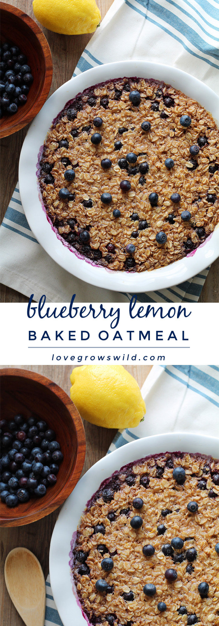 Start your morning off right with this blueberry lemon baked oatmeal! Easy to make and reheats beautifully so you can have a delicious, healthy breakfast all week long. | LoveGrowsWild.com