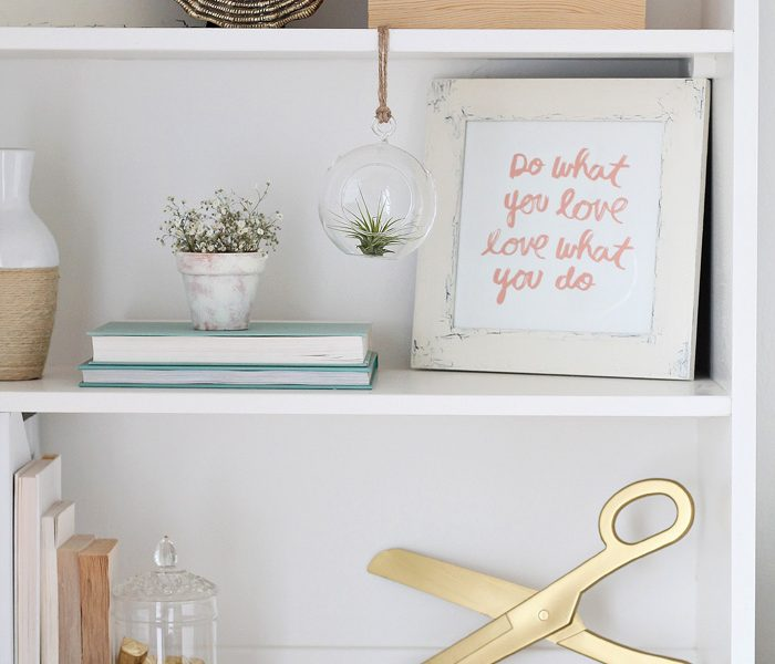 See how 3 bloggers decorated their homes with air plants!   LoveGrowsWild.com