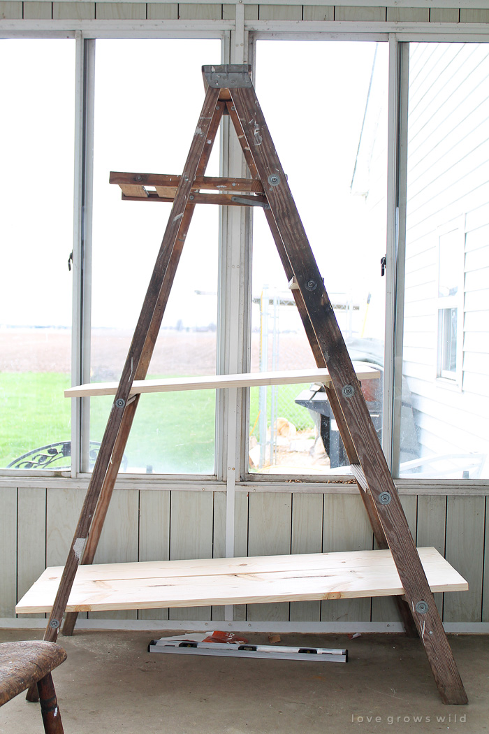 Antique Ladder Shelving Love Grows Wild