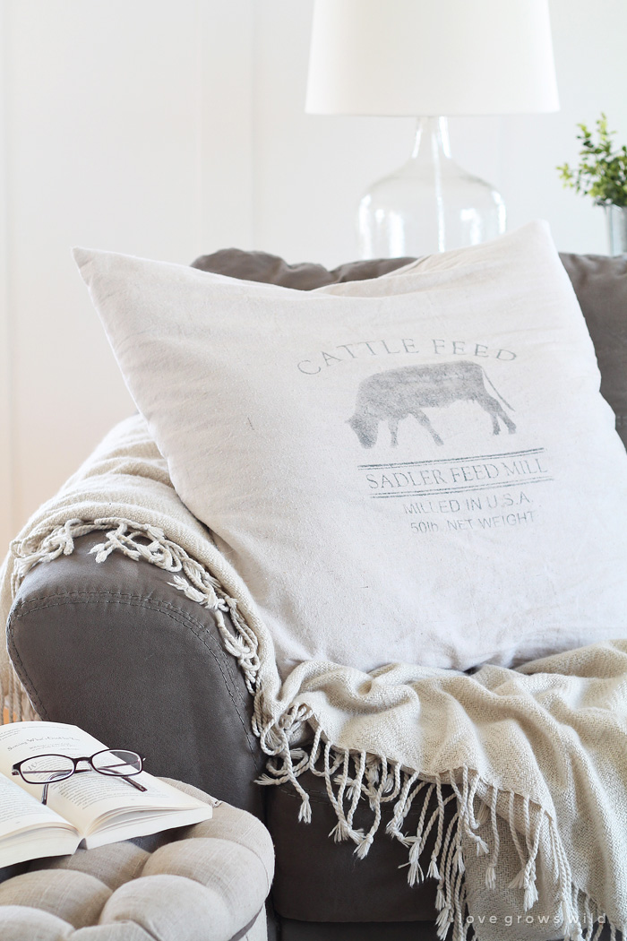 Learn how to make inexpensive pillow covers from a drop cloth! Adds instant comfort and coziness to any room. Details at LoveGrowsWild.com