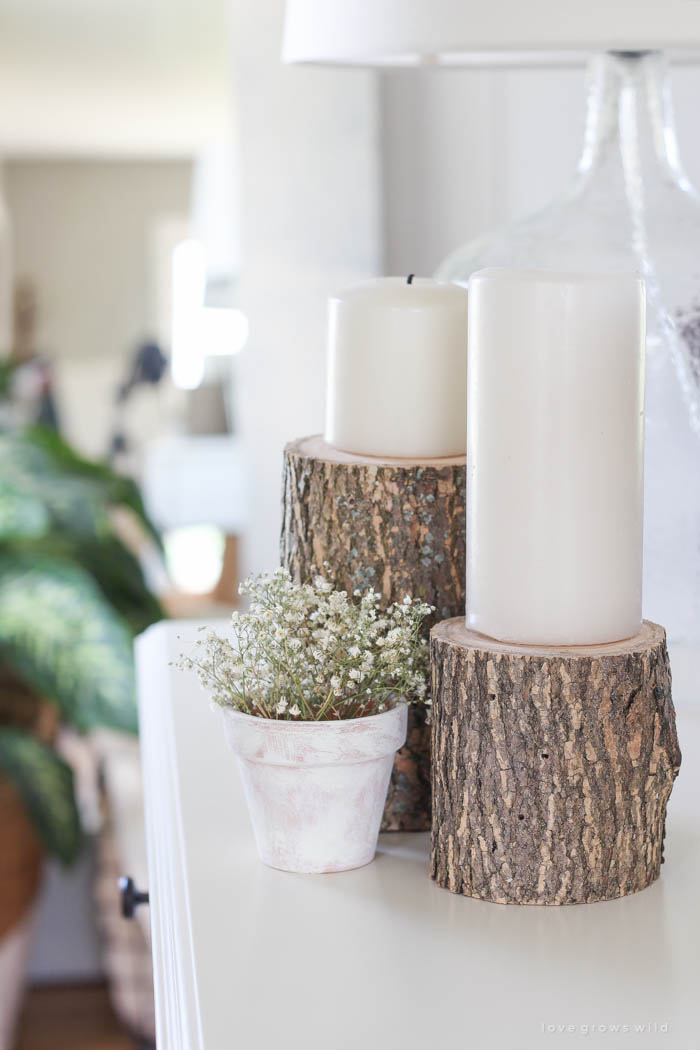 Bring A Touch Of Nature Into Your Home With These Super Easy And Cheap