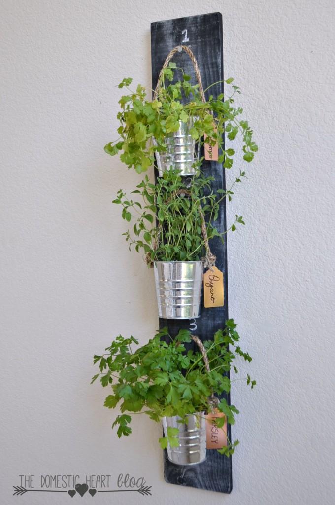 herbs-6-680x1024