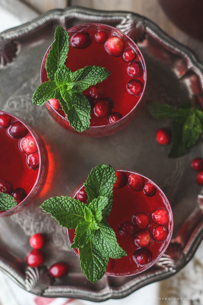 This non-alcoholic Cranberry Holiday Punch is a must for your next holiday party! Serve with cranberries and mint leaves for a beautiful presentation. | LoveGrowsWild.com