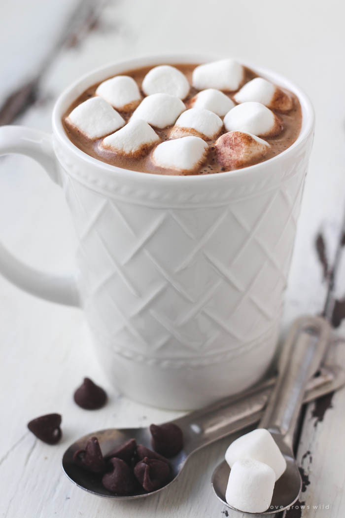 This homemade hot chocolate mix is super creamy and SO delicious! Make a big batch for the winter or just a single serving, OR give it as a gift! | LoveGrowsWild.com