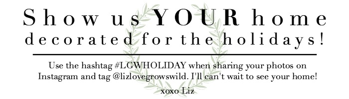Share YOUR holiday photos by using the hashtag #LGWHOLIDAY!   LoveGrowsWild.com