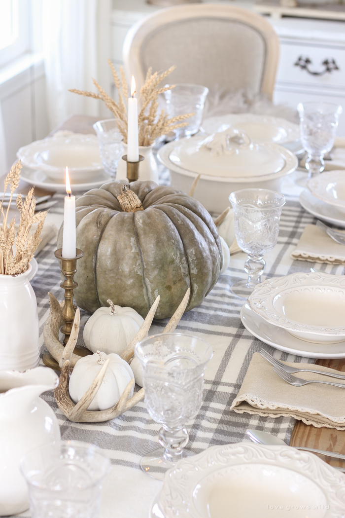 Create a cozy, yet festive Thanksgiving table using these quick and simple ideas