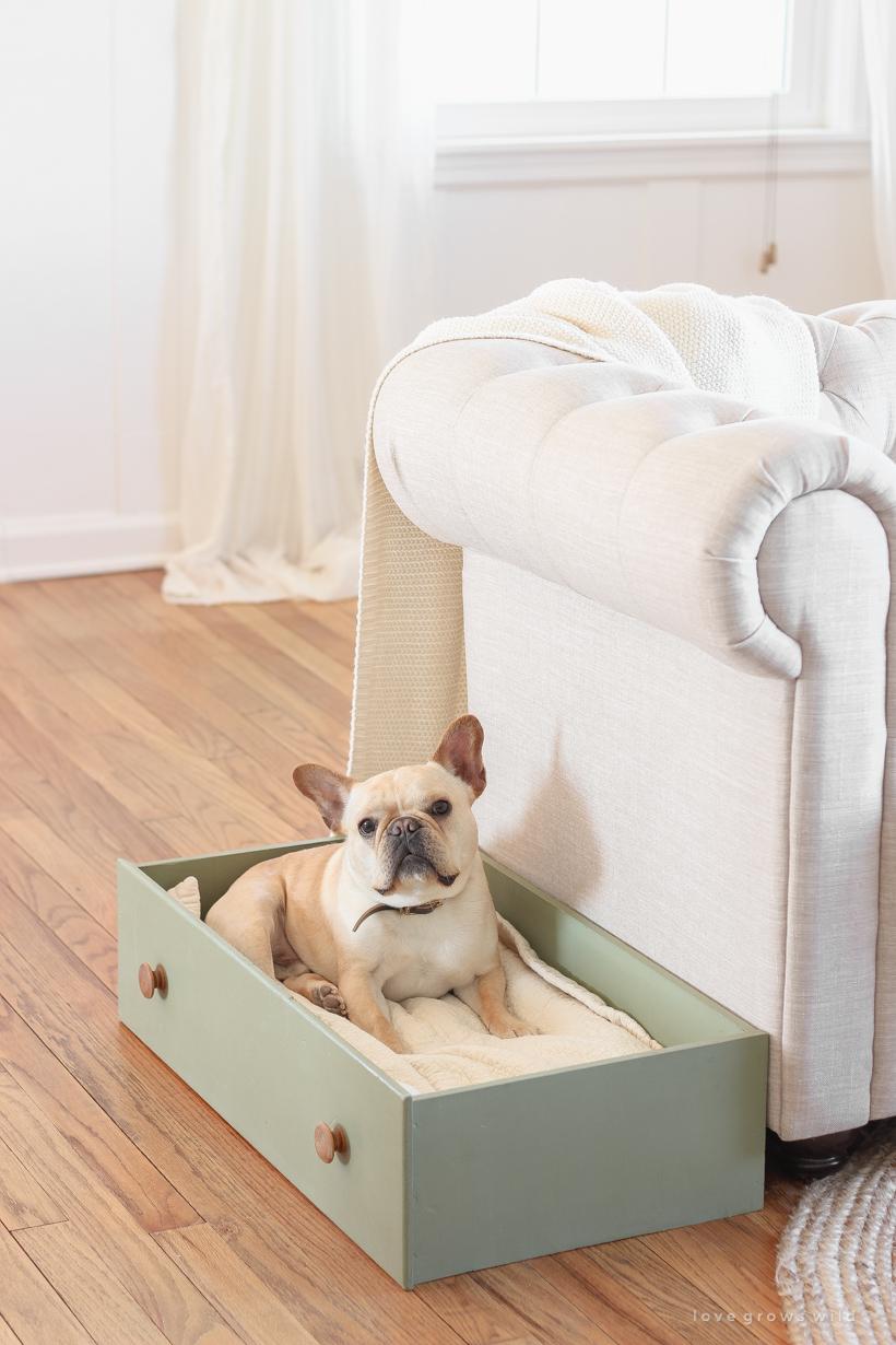 Diy Drawer Dog Bed Love Grows Wild
