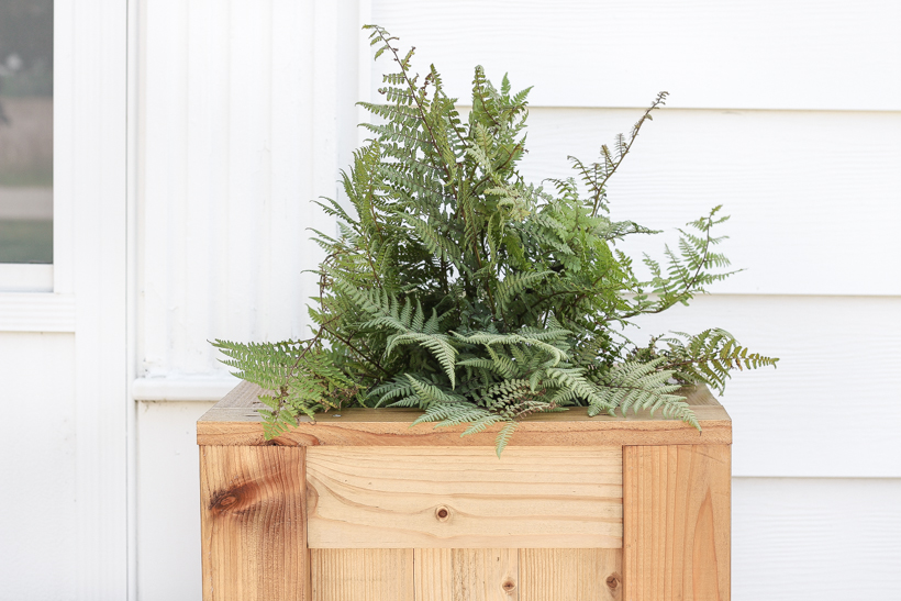 Tall Outdoor Cedar Planter DIY Building Tutorial