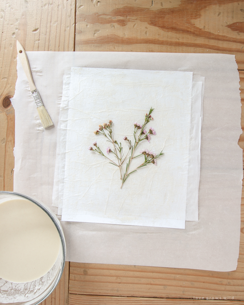 Learn how to make beautiful floral-inspired artwork on a budget with this simple Paper Mache Pressed Flower tutorial